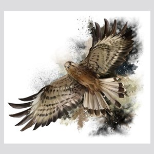 Falcon Flight 8x10 Photo to Canvas